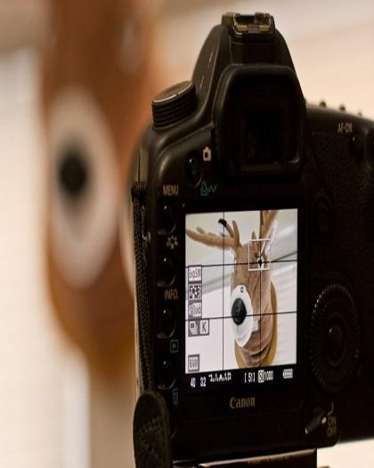 Photographic Techniques